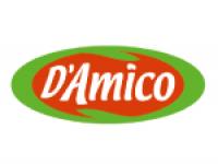 alpunto-damico